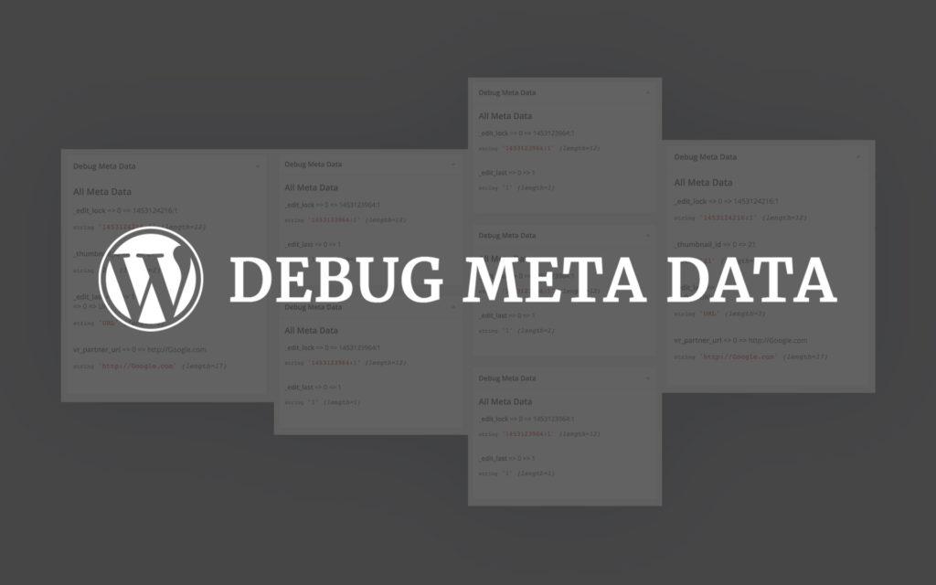 DEBUG META DATA